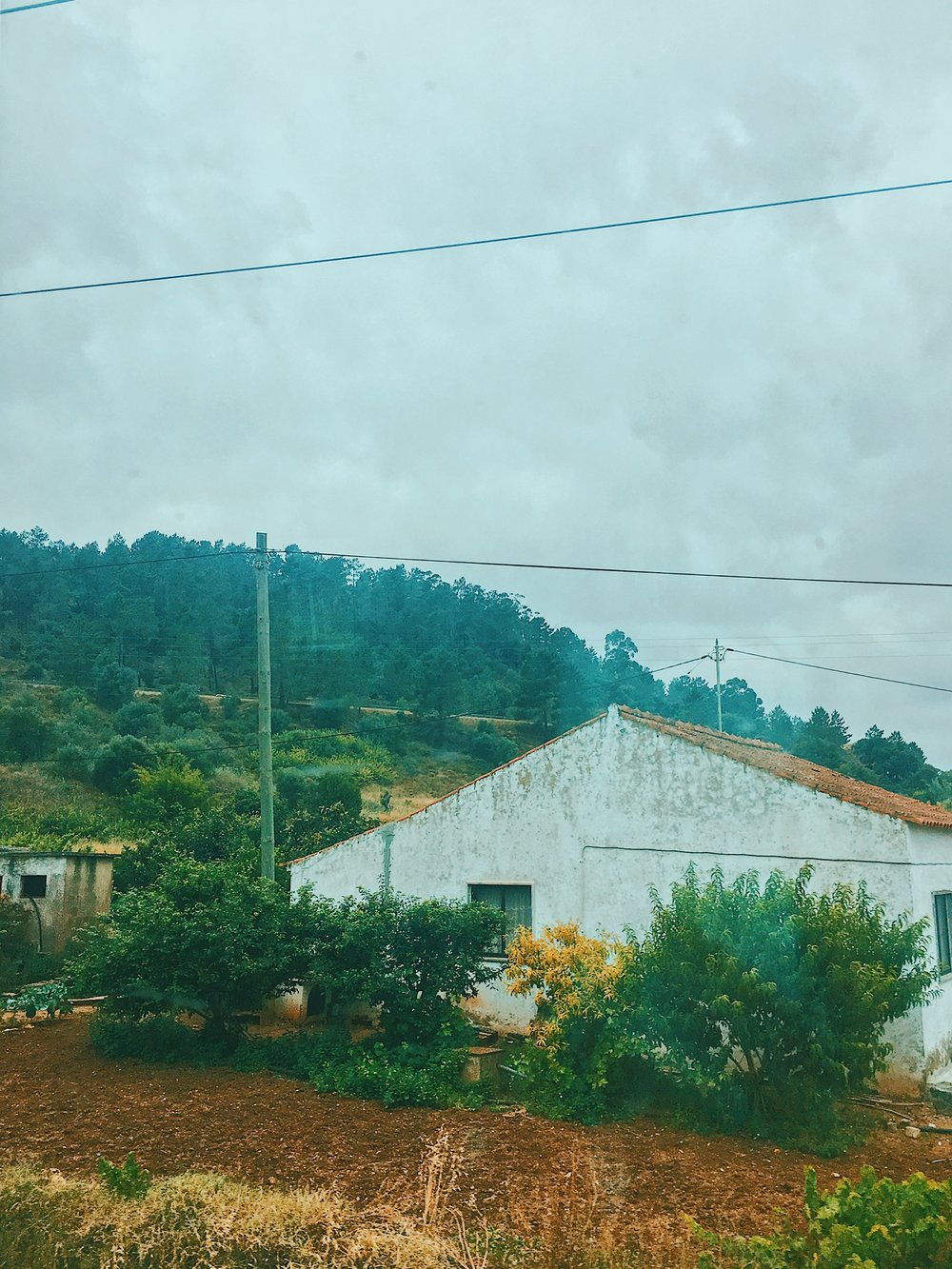 I watched the countryside and several small towns go by from my seat on the train to Faro