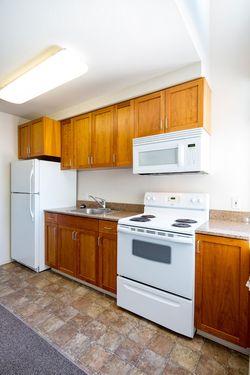 Sample-Kitchen-3_Allston-Place.jpg