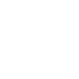Area 41 Pizza Co.
