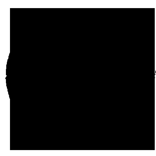 V_Logo_Black.png
