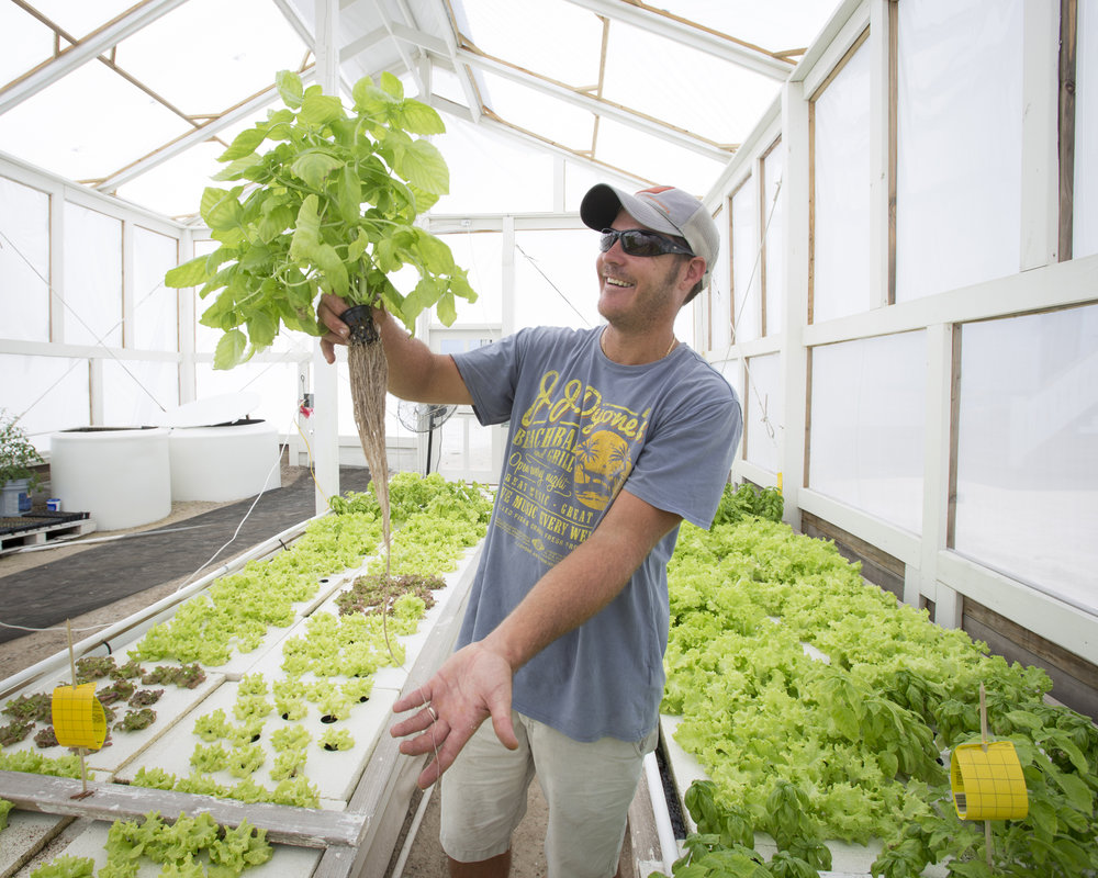 Markus Bischof of Ambergreens Aquaponics grew up in Belize and has a master's degree in Fisheries Management and Aquaculture.