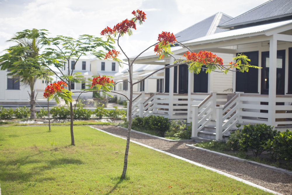 Mahogany Bay Village, Curio Collection by Hilton hotel rooms.