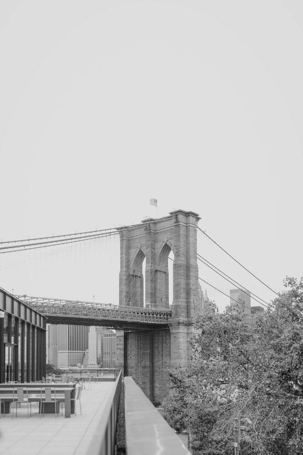 dumbo-engagement-elizabeth-tsung-photo