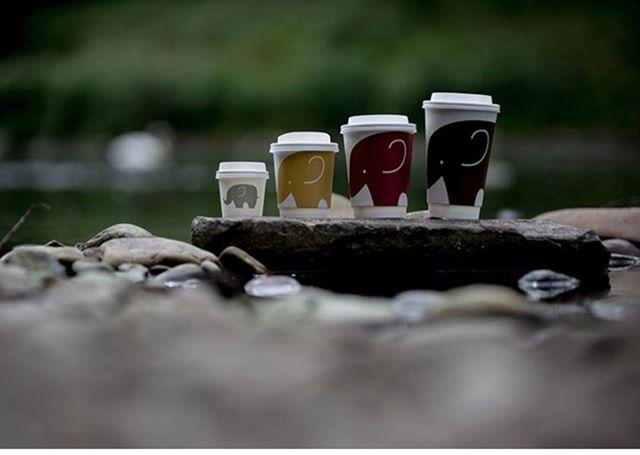 We are familyyyyyyy! 😍 Cutest cups ever! credits: @thethirstyelephant