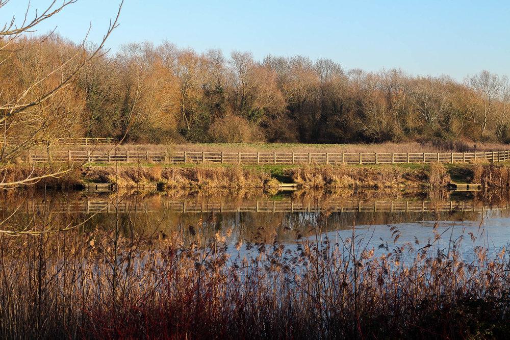 Teardrop Lakes, Milton Keynes