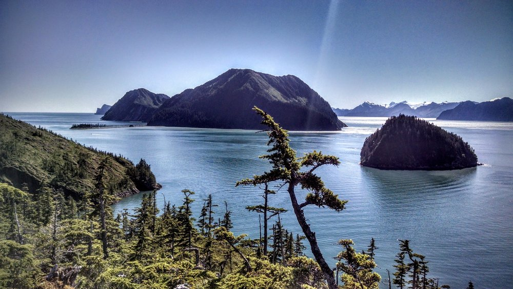 Fox Island and the Fox Island Spit (left) and Hat Island (right) as seen from the bluff above the yurts at Shearwater Cove.