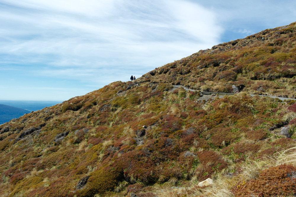 Switchbacks down Te Maari craters