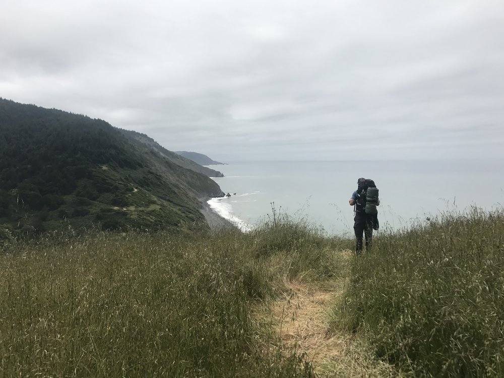 Overlooking Shady Dell, Lost Coast Trail, California