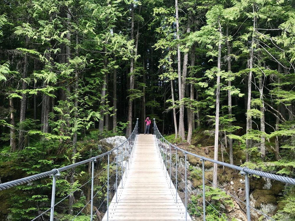 Suspension bridge over the Cheakamus River, British Columbia