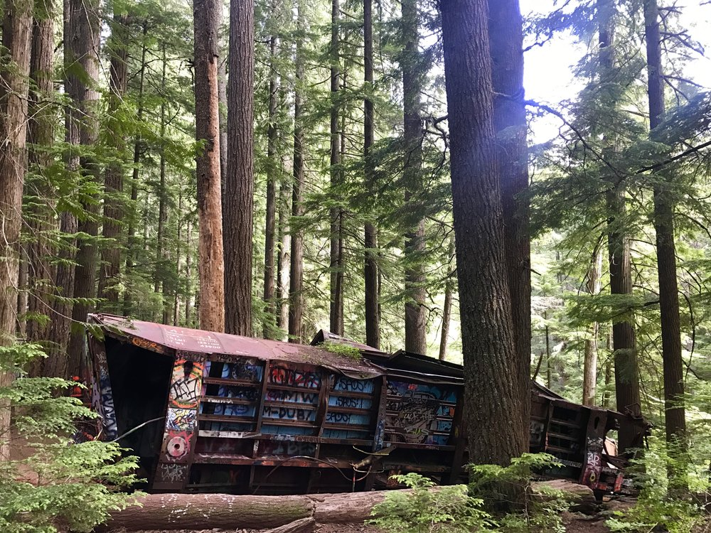 Scattered boxcars on the Trash Trail, Whistler, British Columbia