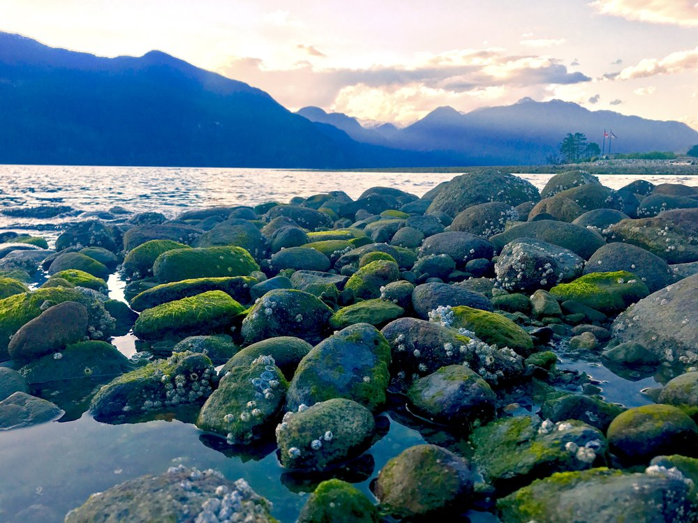 Furry Beach, Sea-to-Sky Highway, British Columbia, Canada
