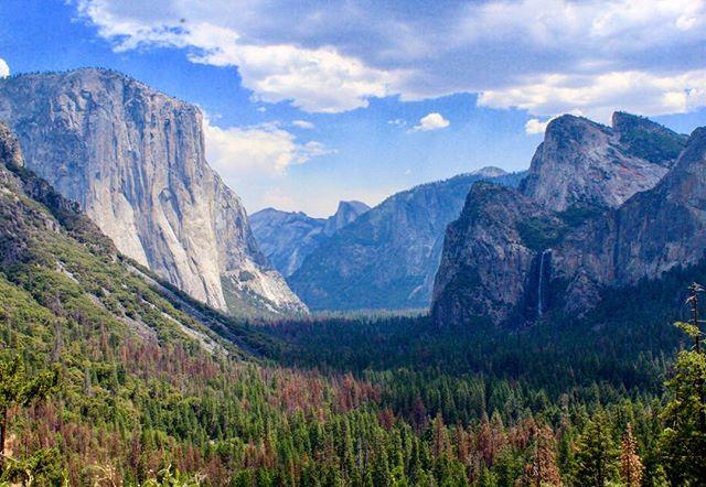 #tbt to last week 🏞. . . #tunnelview #yosemite #nationalpark #california