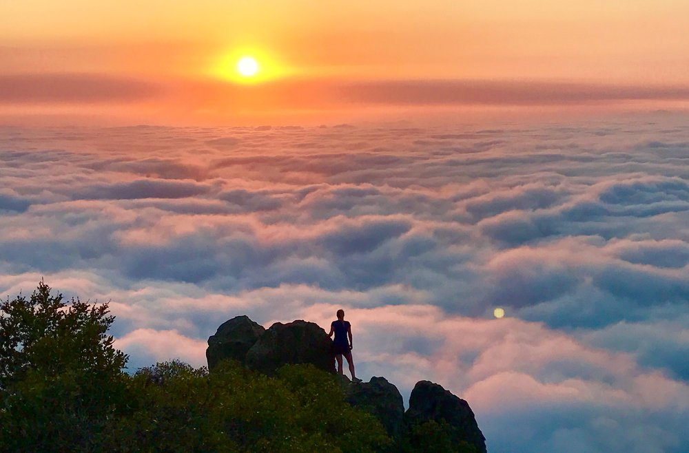 East Peak, Mt. Tamalpais, California