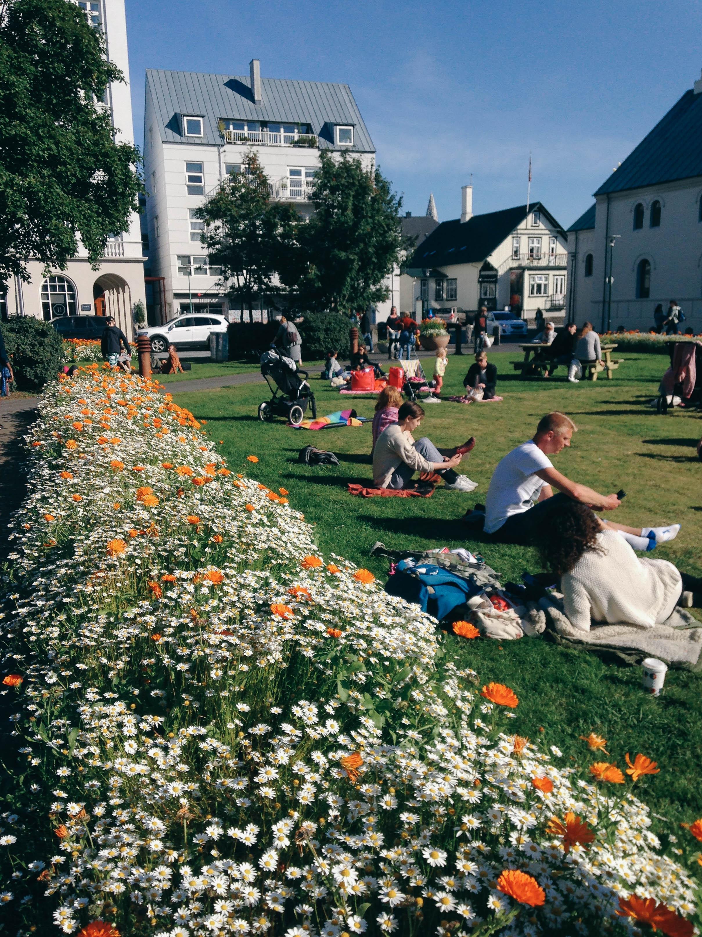 Reykjavik, Iceland - Worthy Pause