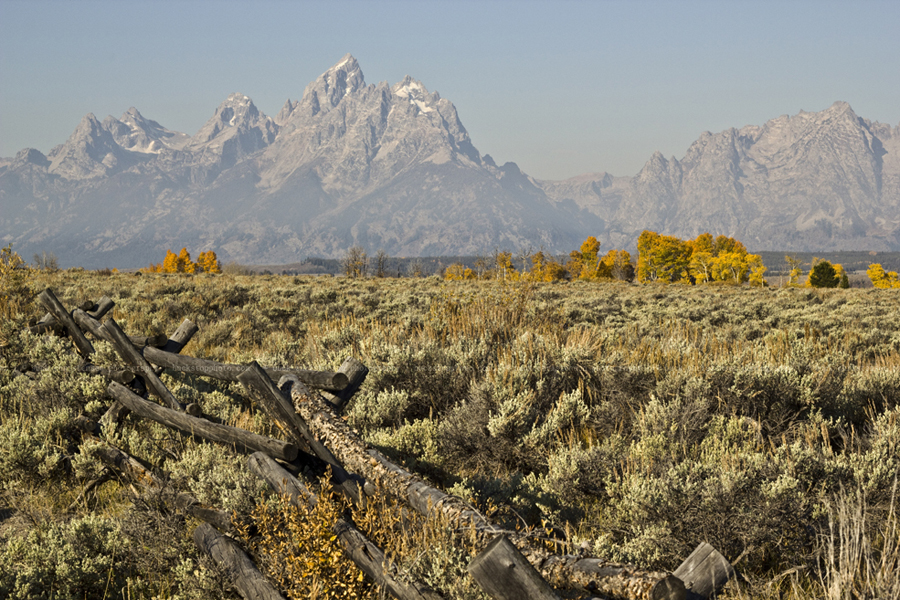 yellowstoneandtetons004