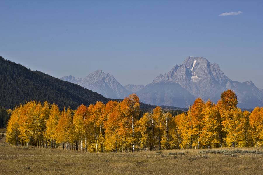 yellowstoneandtetons006