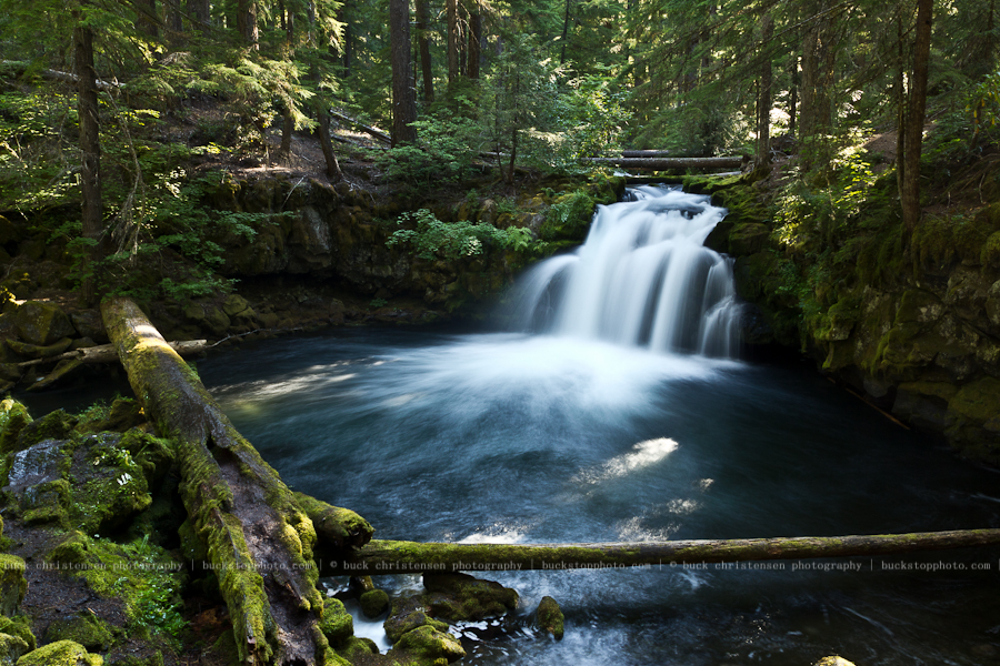 20110821_oregon__MG_2413