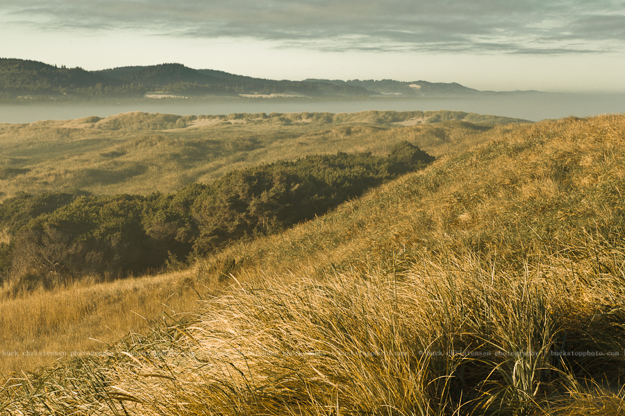 Oregon Dunes National Recreation Area, Oregon Coast