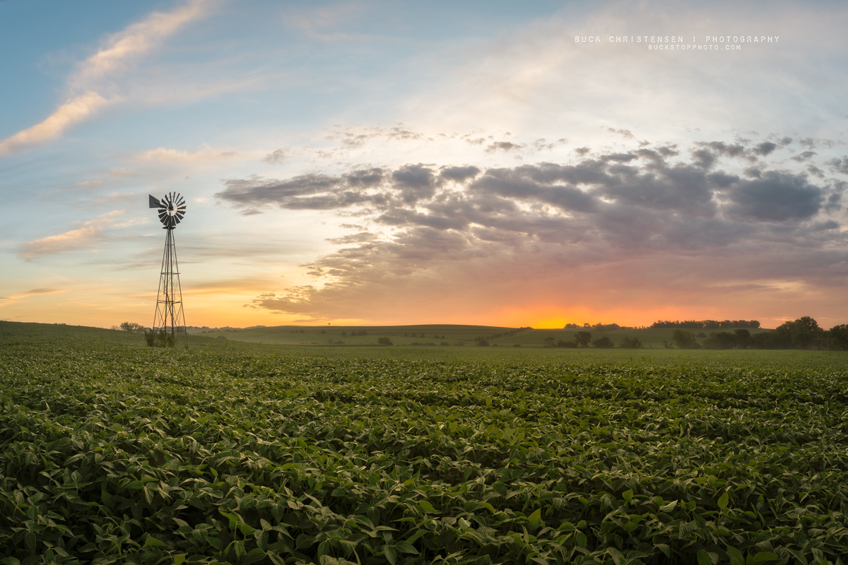 'windgazing', windmill and farm, Treynor, Iowa