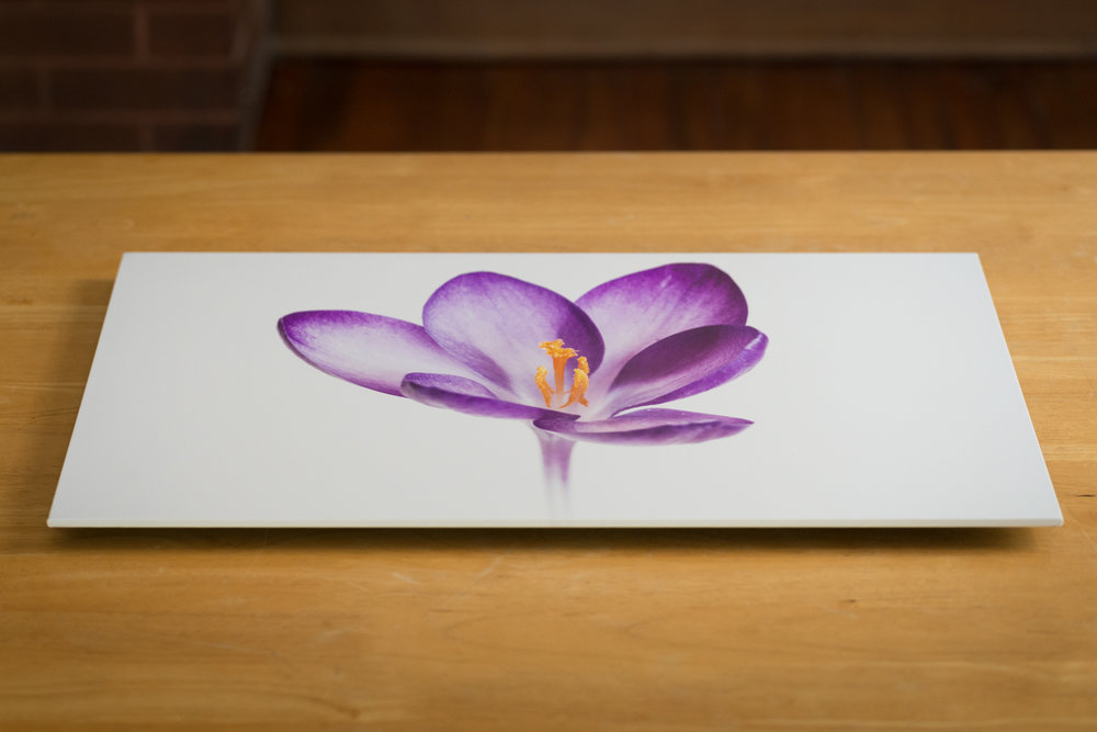 Thinwrap, 12X18, top and side view.  A thinwrap is thinner (lower profile) than a typical canvas print. The print is over-laminated for protection and mounted on gatorboard.