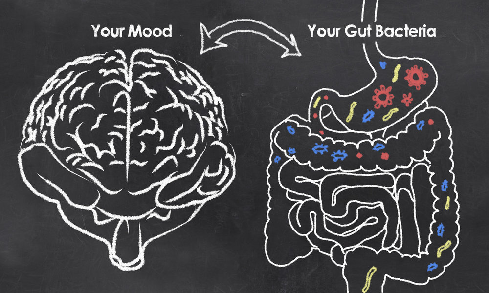 - The trillions of bacteria living in your gut contribute to your health, energy and mood. Here's how to make them happy so you can be happy too!