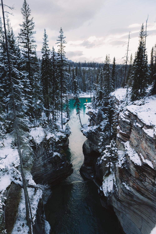 AthabascaFalls-7381.jpg