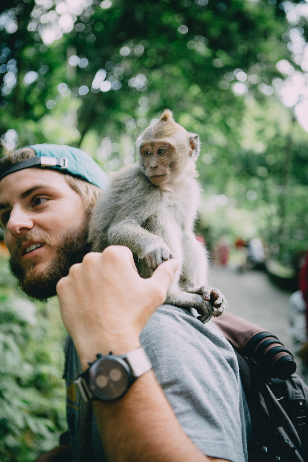 Ubud Monkey Forest-5946.jpg