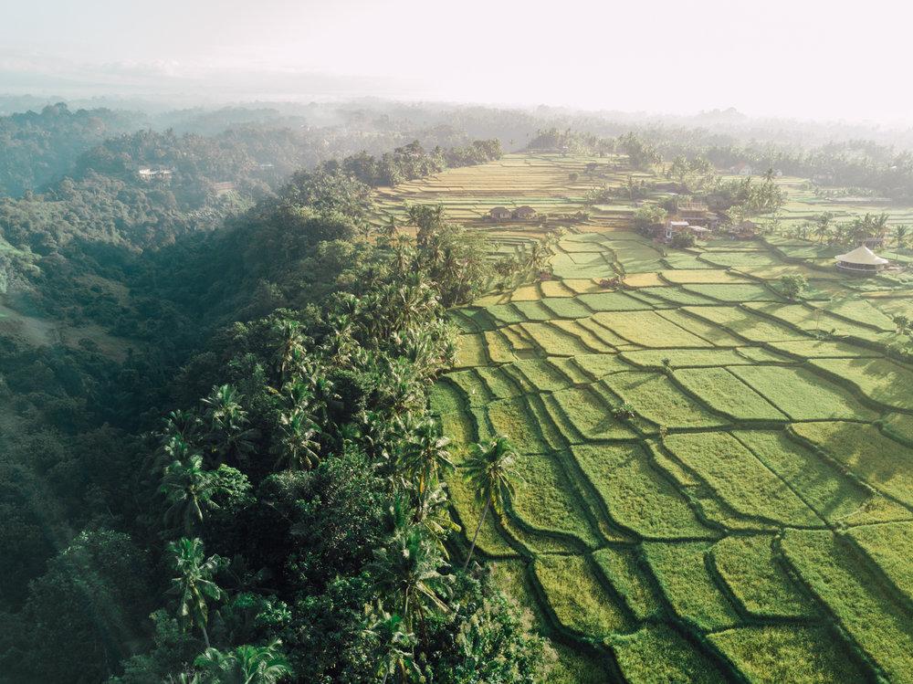 Bali Drone-0169.jpg