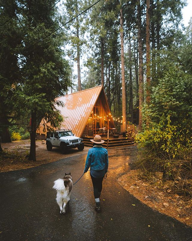 Winter getaway essentials include: cute A-frame in the woods, my pup, and as much rain or snow as we can get. Swipe to see the cutest napping husky in all the land 🥰 what do your winter escapes include?!