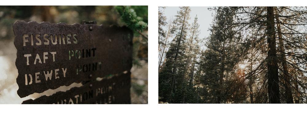 Victoria + Thomas Yosemite.jpg