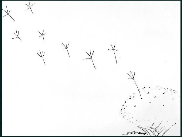 let go (1).png