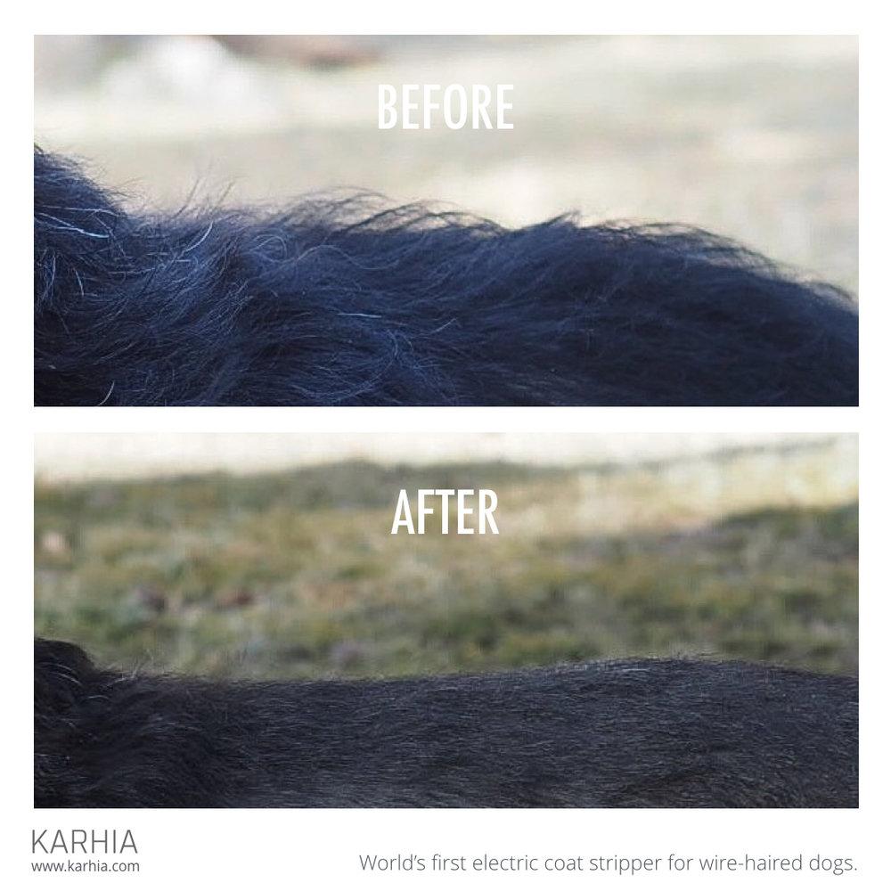 Karhia Before-After Square Alpo.001.jpeg