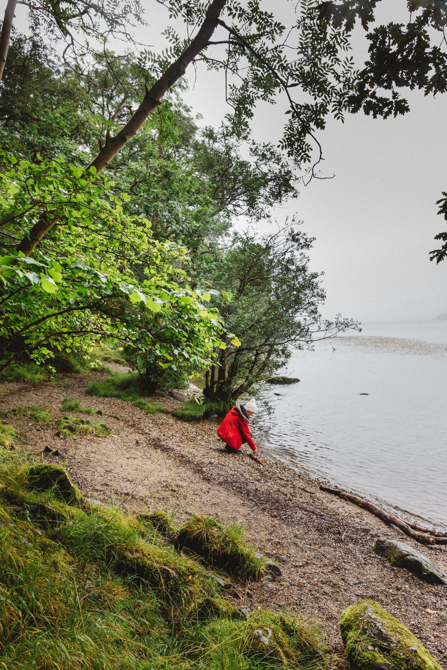Inchcailloch Island 2.jpg