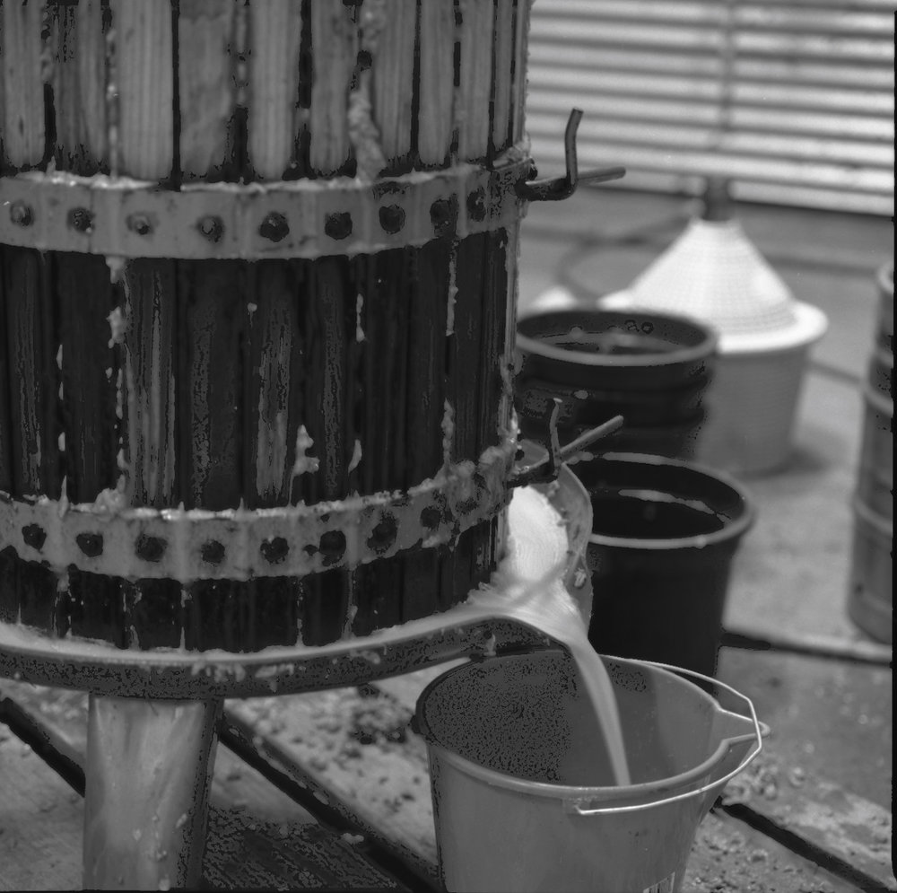 Basket Press juice running.jpg
