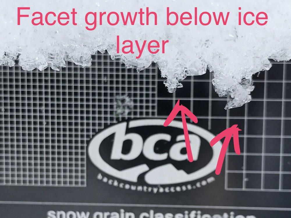 Facet growth below ice layer Berthoud Pass November 2017