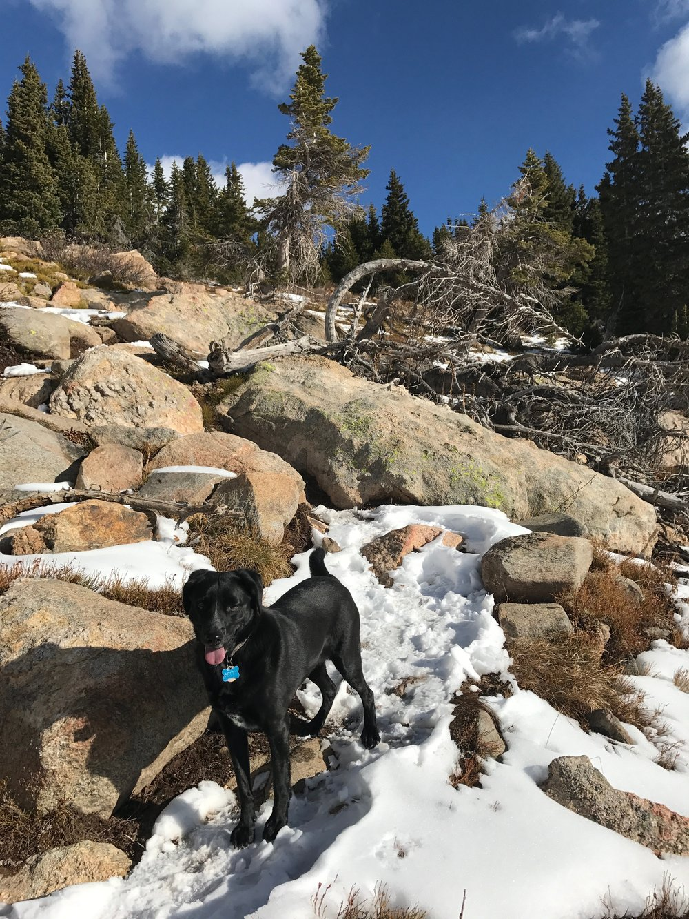Vasquez Peak Trail with Betty November 2017