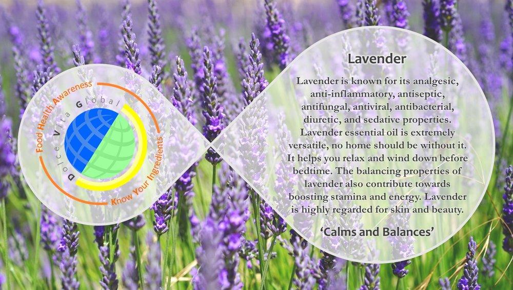 KYI_Lavender_ENG