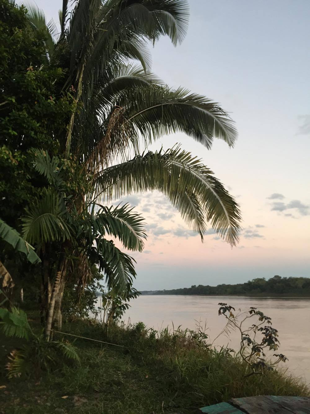 Benefits of the bare necessities: Jungle living in Peru -