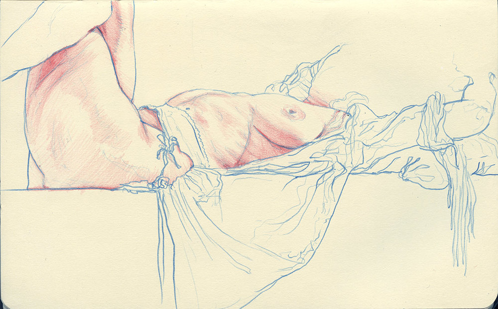 "8"" x 5"" Blue and red colored pencil in Moleskine sketchbook. 2016"