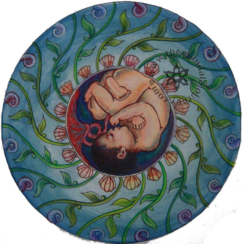 mandala-baby-sea-life.jpg