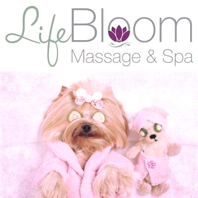 Life Bloom Massage & Spa