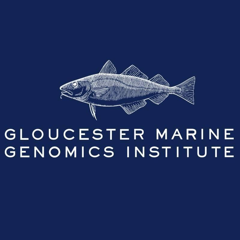 Gloucester Marine Genomics Institue