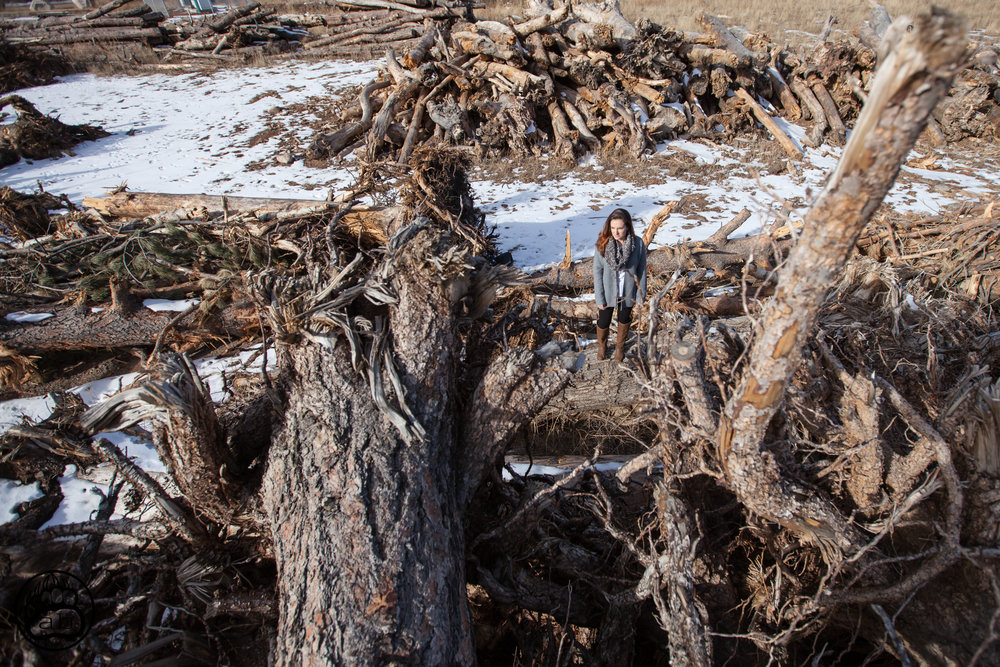 USA. Drake, Colorado. January 28, 2018. A massive debris pile remains on the Sylvan Dale Ranch five years after the devastating Big Thompson floods.
