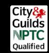 nptc certified tree surgeons