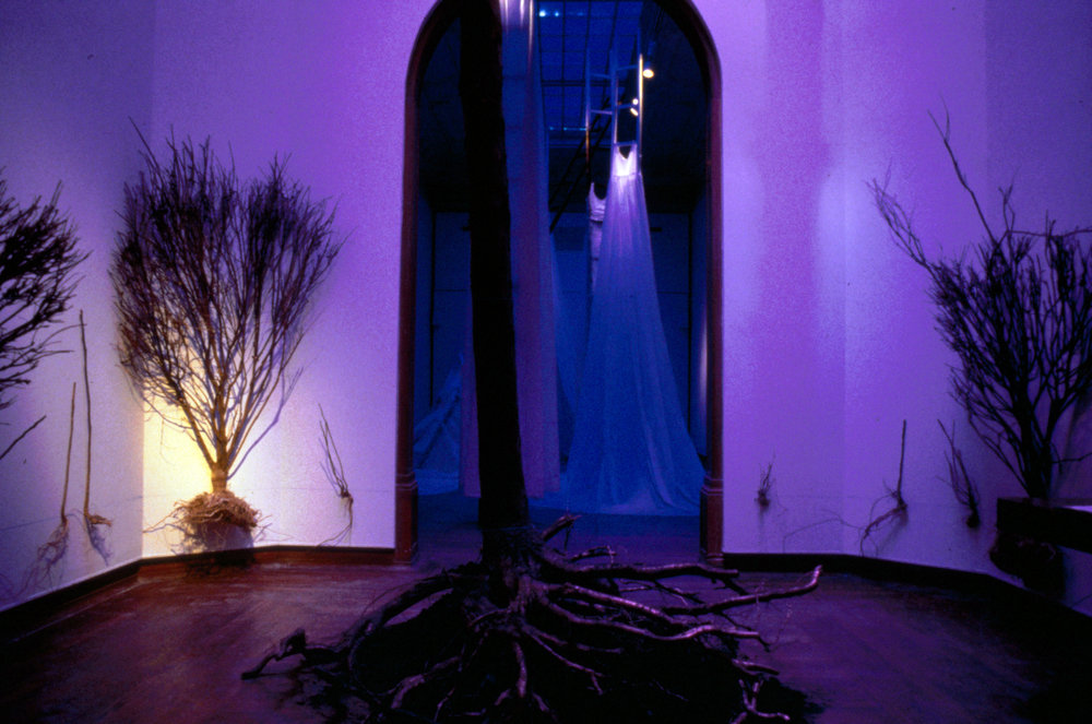 Disembodied   installation, Hewlett Gallery, Pittsburgh, PA  1996   17-foot Beech nut tree with charred top and gold leafed roots, burning bushes, swamp mallow stalks, chalk line at ground level, blue light