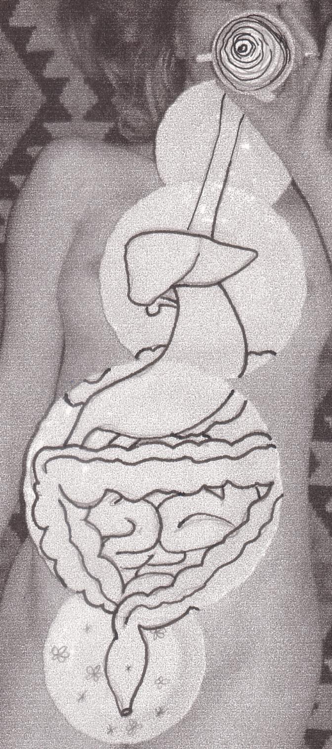 digestive drawing.jpg