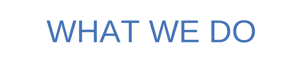 What We Do Banner.png
