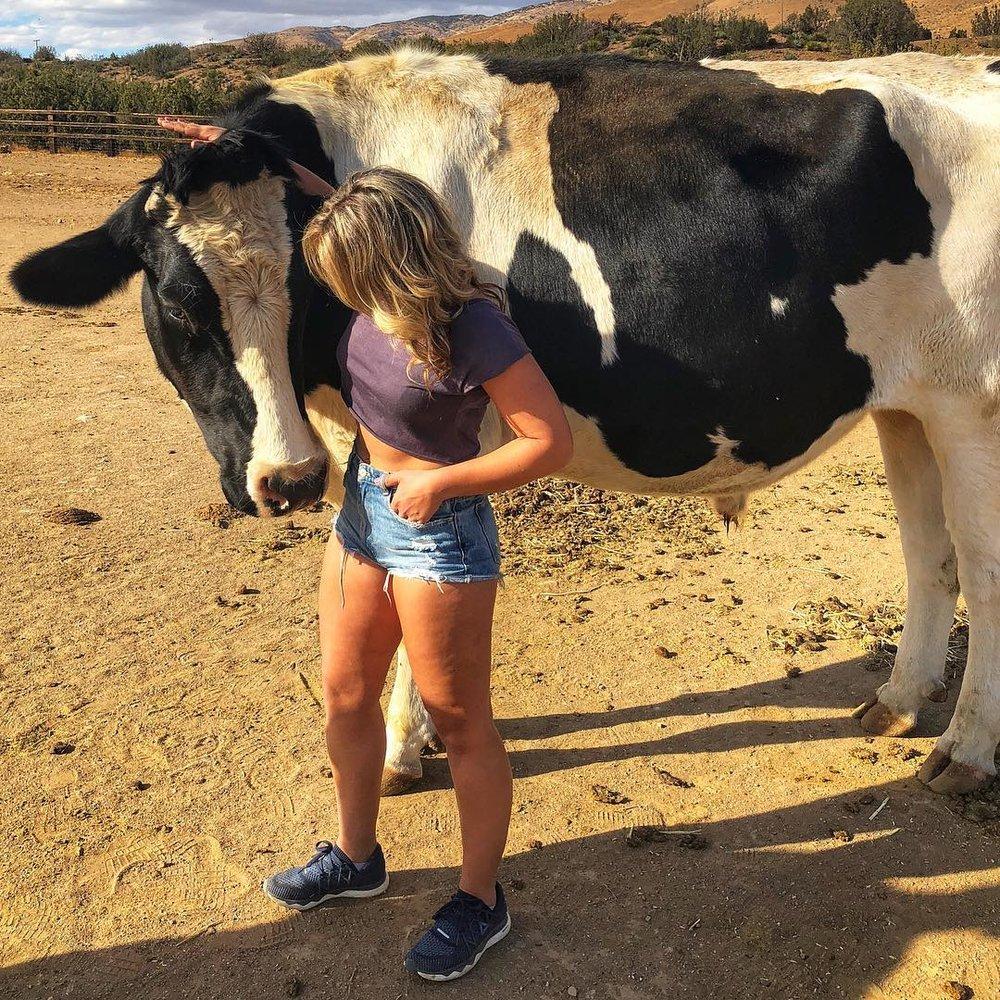 Dairy Love.jpg
