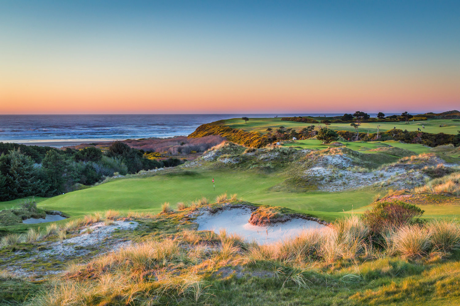 Image result for bandon dunes golf resort