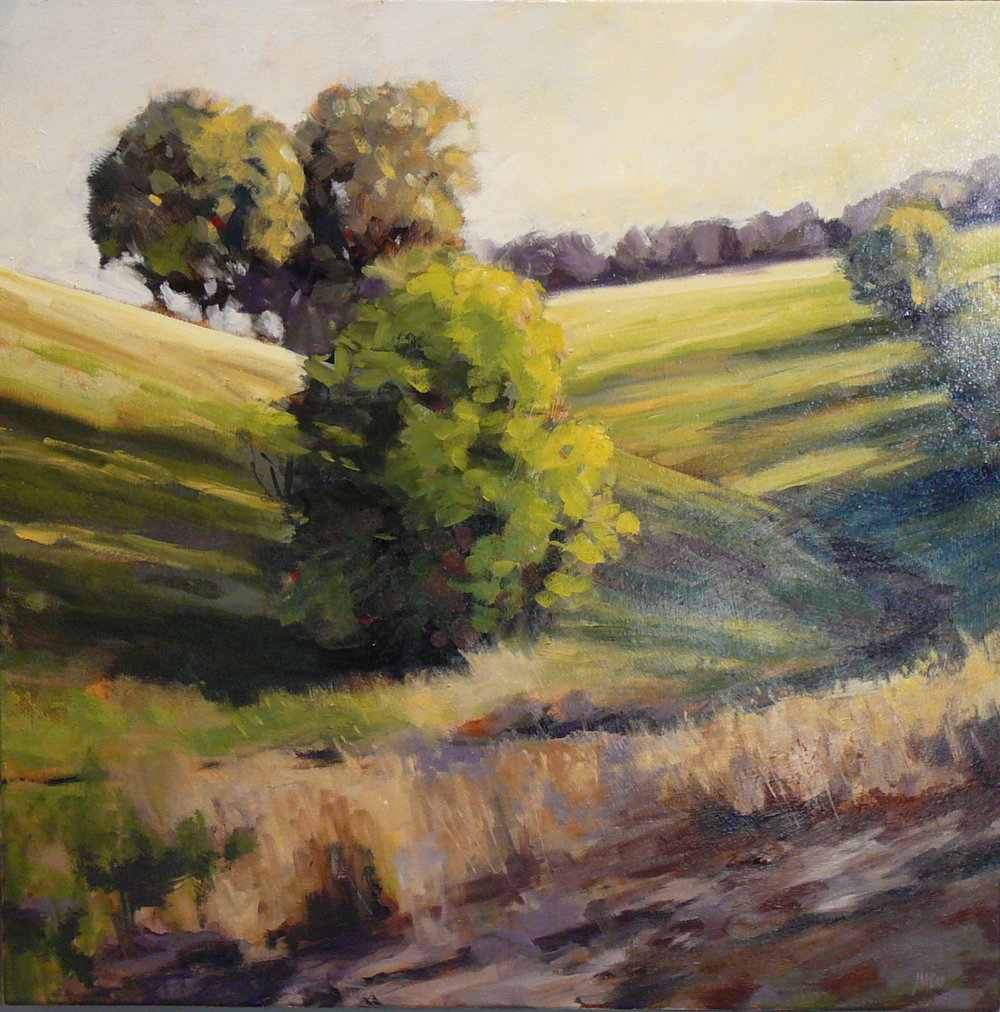 Near Murphys, California   SOLD